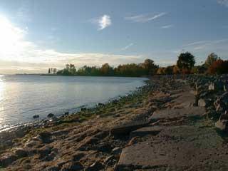 Along the Lakeshore